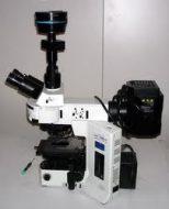 میکروسکوپ متالوگرافی BX53